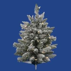24 X18 Flocked Sugar Pine Dura Lit 50c