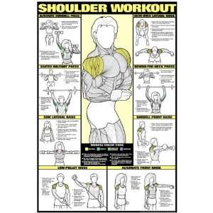 The gallery for --> Triceps Workout Poster