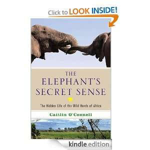 The Elephants Secret Sense Caitlin OConnell  Kindle