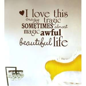This Crazy Life Decal Sticker Wall Graphic Art Quote Love Wedding Boy