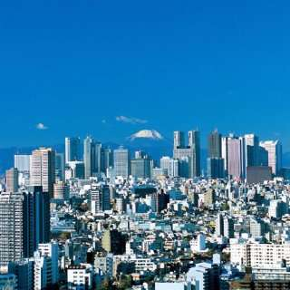 Tokyo Views Tokyo Tower and Mount Fuji Appstore for