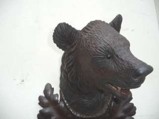 BLACK FOREST WOOD CARVED BEAR HEAD ON 1902 dated PLAQUE
