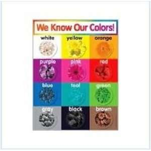 Teachers Friend 978 0 545 19639 0 Colors Chart Toys & Games