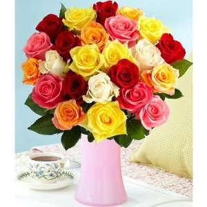 Two Dozen Rainbow Roses  Grocery & Gourmet Food