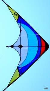 Cool New Stunt Kite_Dual Line/family/children/fly/gift