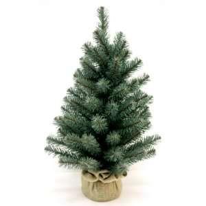 Good Tidings SDNBS20324C Tree Tabletop Noble Blue Spruce Cloth Base 83