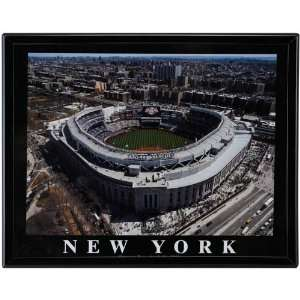 New York Yankees Home Stadium Picture Sports & Outdoors