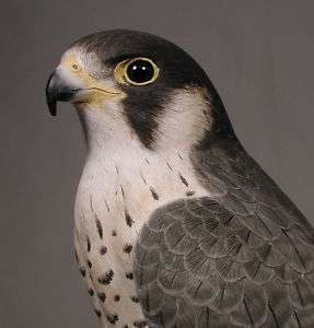 15 Peregrine Falcon Original Bird Carving Wood/Birdhug