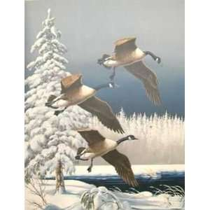 Maynard Reece   Frosty Morning   Canada Geese Home
