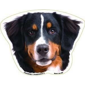 Bernese Mountain Dog Magnet Automotive