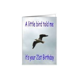 Happy 21st Birthday Flying Seagull bird Card: Toys & Games