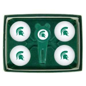Michigan State University Spartans NCAA Golf Ball & Divot