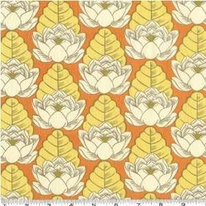 Amy Butler Lotus Pond Tangerine Arts, Crafts & Sewing