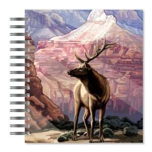 Canyon Elk Picture Photo Album, 18 Pages, Holds 72 Photos