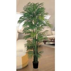 USA zeusd1 CALA 4270450 Areca Silk Palm Tree 7 Inch: Home & Kitchen