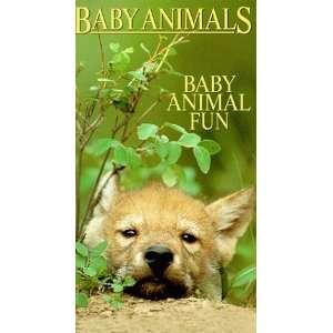 Baby Animals Baby Animals Fun [VHS] Baby Animals Movies & TV