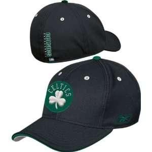 Boston Celtics Official Team Flex Fit Hat Sports