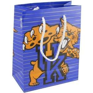 Kentucky Wildcats Small Team Logo Gift Bag
