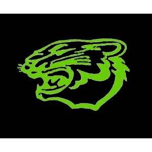 Green LARGE ARCTIC CAT SIGN Vinyl Sticker/Decal