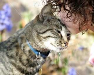 Girl Kissing Cat Royalty Free Stock Photo