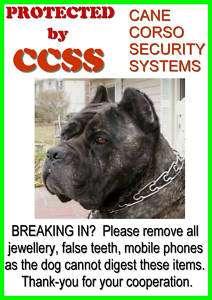 CANE CORSO SECURITY FUN BEWARE OF THE DOG SIGN